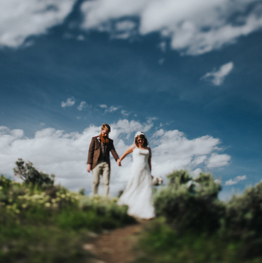 A bride leads a groom down a hillside in Madison Wisconsin