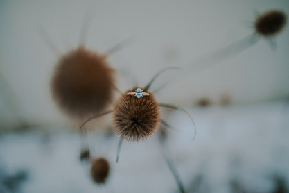 A close up of a ring sitting on a winter flower
