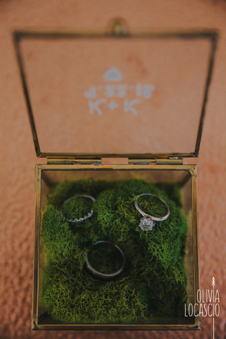 Wisconsin Wedding Photographers - unique engagement rings
