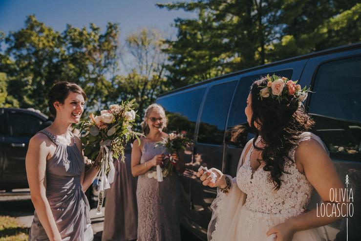 Wildcat Mountain State Park - rustic Wisconsin wedding