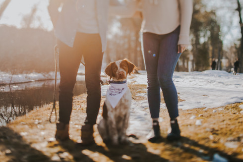 A dog sits between its owners during a Central Wisconsin engagement session