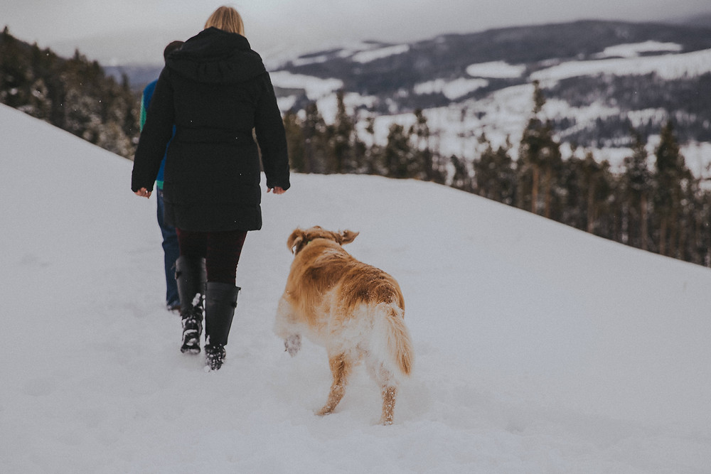 A woman walks with a dog at Sapphire Point Engagement Photos