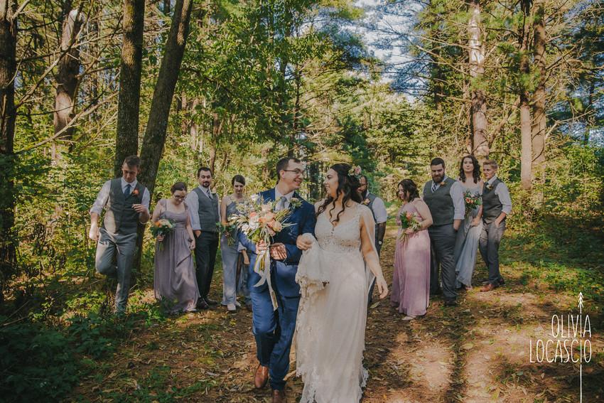 Wisconsin Wedding Photographers - Wildcat Mountain State Park wedding ceremony