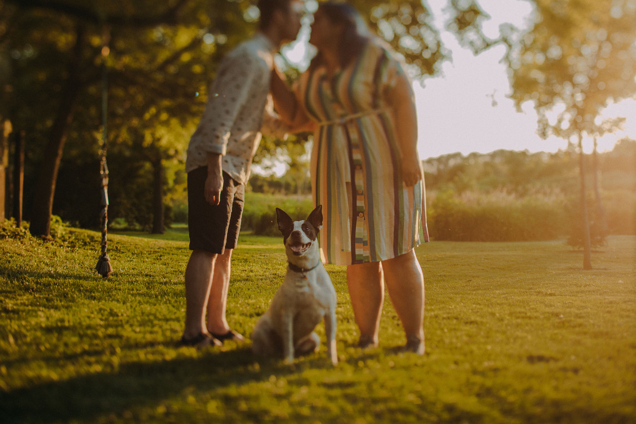 A dog looks at the camera as a man and woman kiss behind her at a My Dog and Me engagement session in Madison, Wisconsin