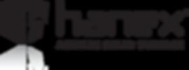 Hanex solid surface logo