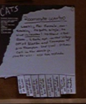 Cats flyer.png