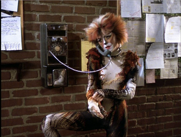 cat on a hot tin payphone.png