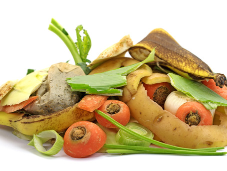 For the sake of climate change ... it's time to investigate ... your food waste!