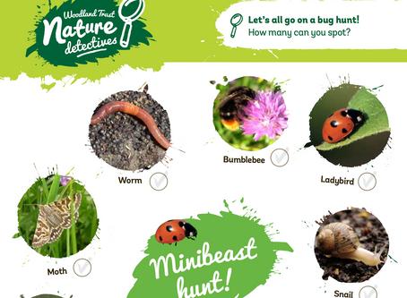 Woodland Trust Nature Detectives - Mini Beast Hunt - Activity Sheet