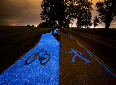 Is this the world's most beautiful cycle lane?