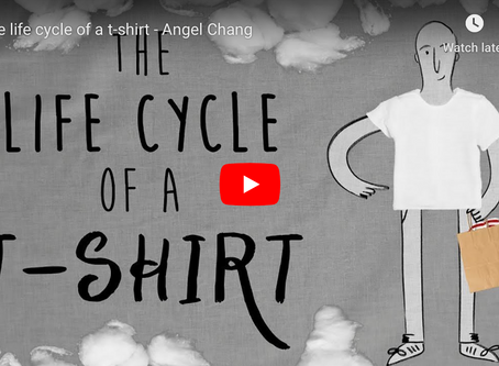 Life cycle of a T-shirt - a Ted Ed video