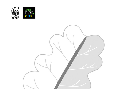 Forest of Promises - WWF Leaf Template. COP26.       November 2021