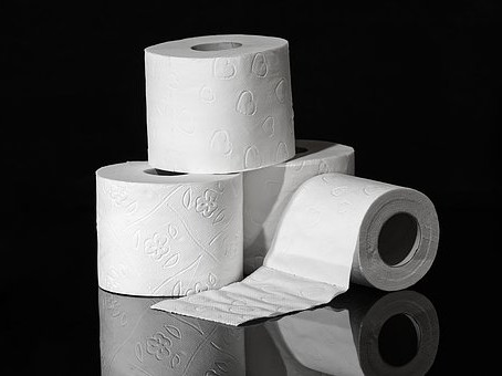 How many toilet rolls do you use?