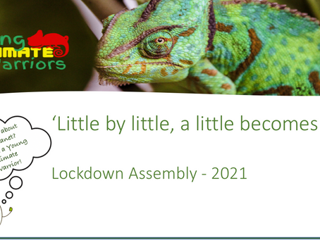 'Little by little, a little becomes a lot'.  Young Climate Warriors Lockdown Assembly