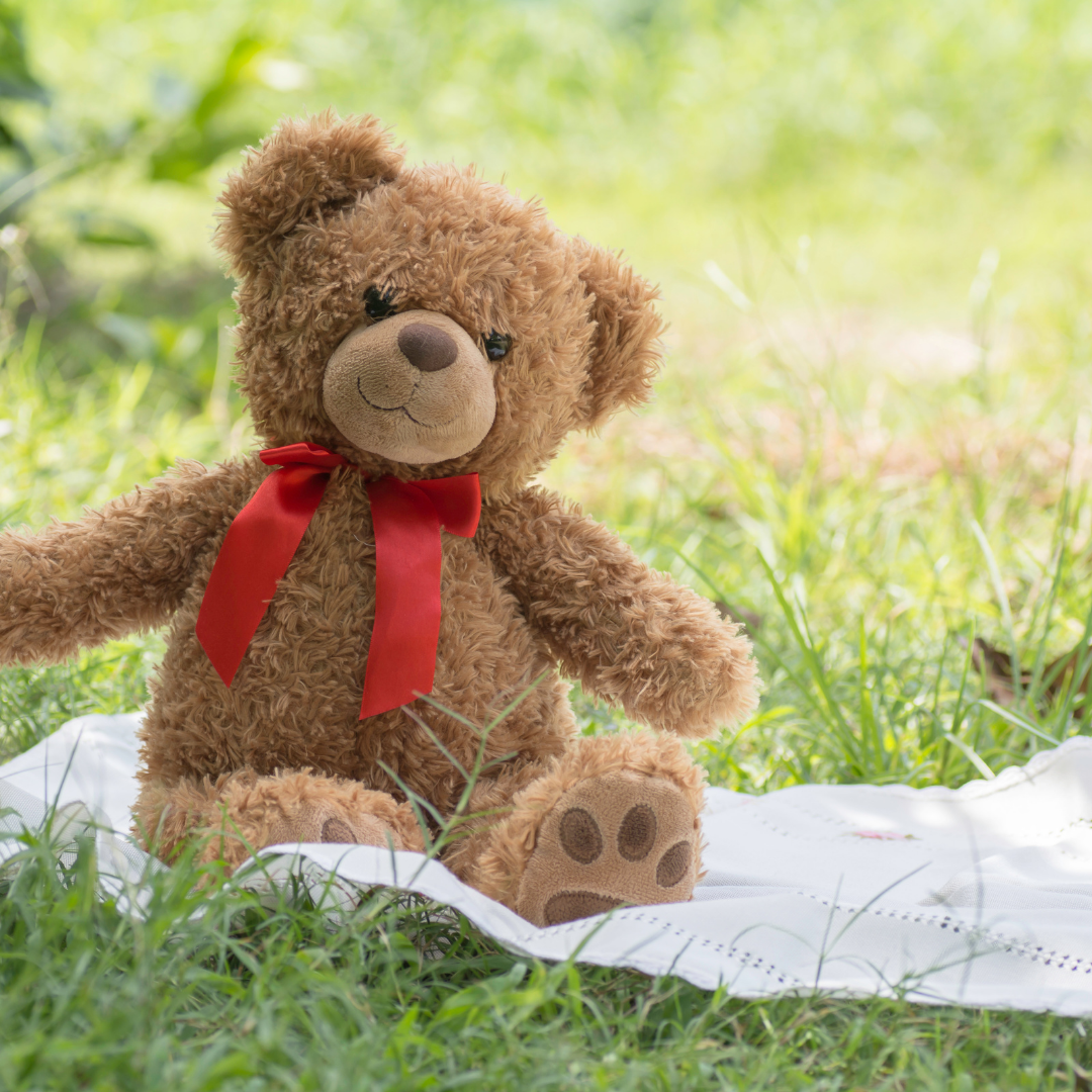 Teddy Bear Luxe Picnic
