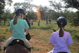 colour changing faze thermochromic t-shirts horse safari south africa