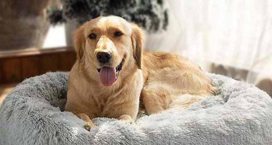Calming Pet Bed-50%OFF