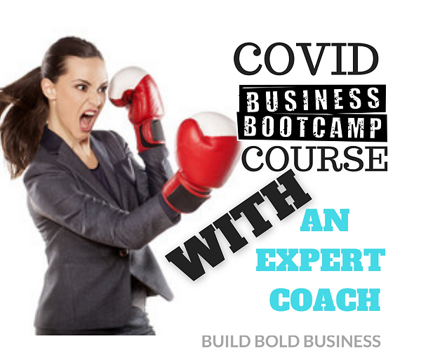 Covid Business Bootcamp Course W Coach.p