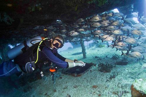 PADI Advanced Open Water Diver - Pocna Dive Center