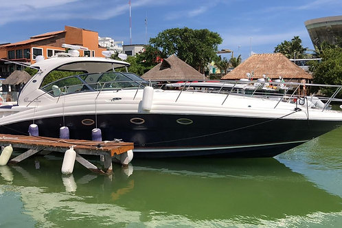 Private Yacht SeaRay Sundancer 42ft - Mexico Divers
