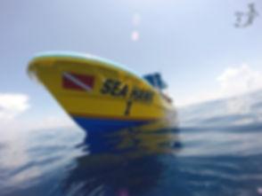 SeaHawk-TasteofIsla-Isla Mujeres-Caribbe