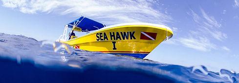 SeaHawkScubaDive-TasteofIsla-Isla Mujere