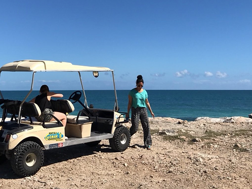 Large 6 Person Size Golf Cart - 24 Hrs Rental