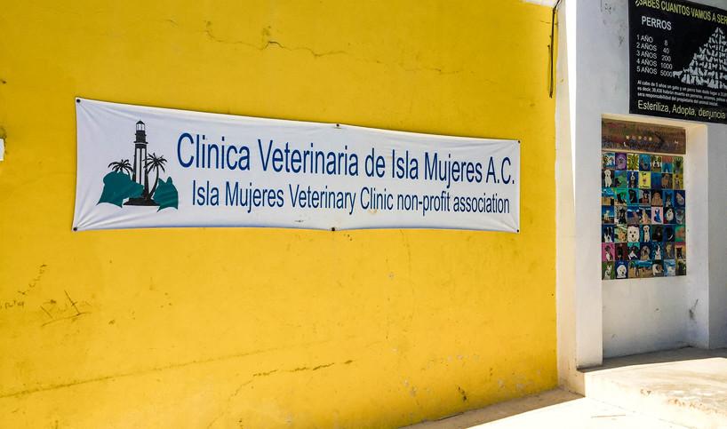 ClinicaVeterinariadeislaMujeres32-tasteo
