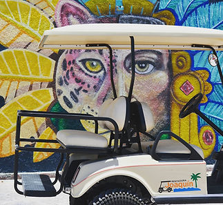 RentadoraJoaquin-services-golf-cart-rent