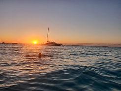 Cruise-Divers-tasteofisla-isla-mujeres-m