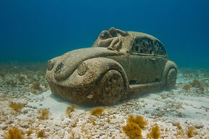 Scuba Dive MUSA Underwater Muesem Isla Mujeres Scuba Diving