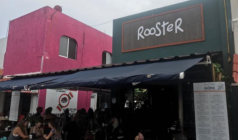 Rooster2-tasteofisla-islamujeres-food-ta