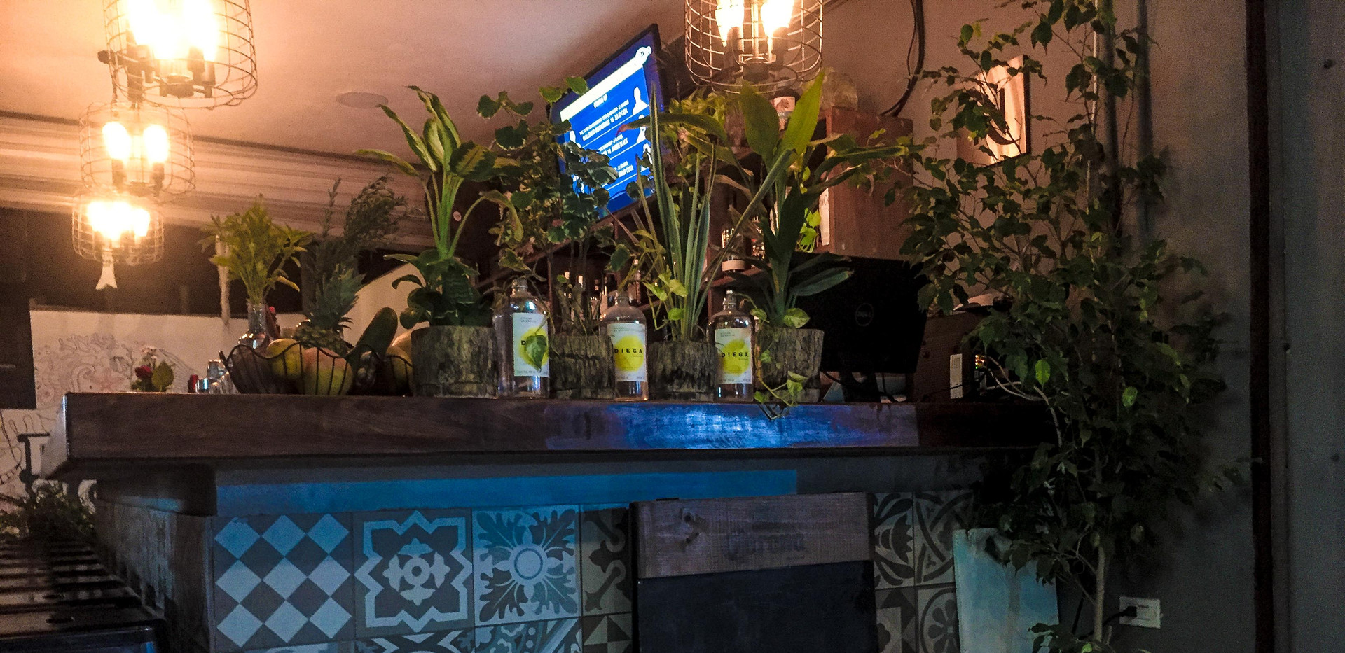 FishGin13-tasteofisla-islamujeres-food-t