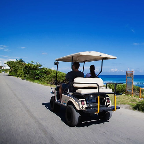 Regular Size Golf Cart 24 Hrs Rental - Rentadora Joaquin
