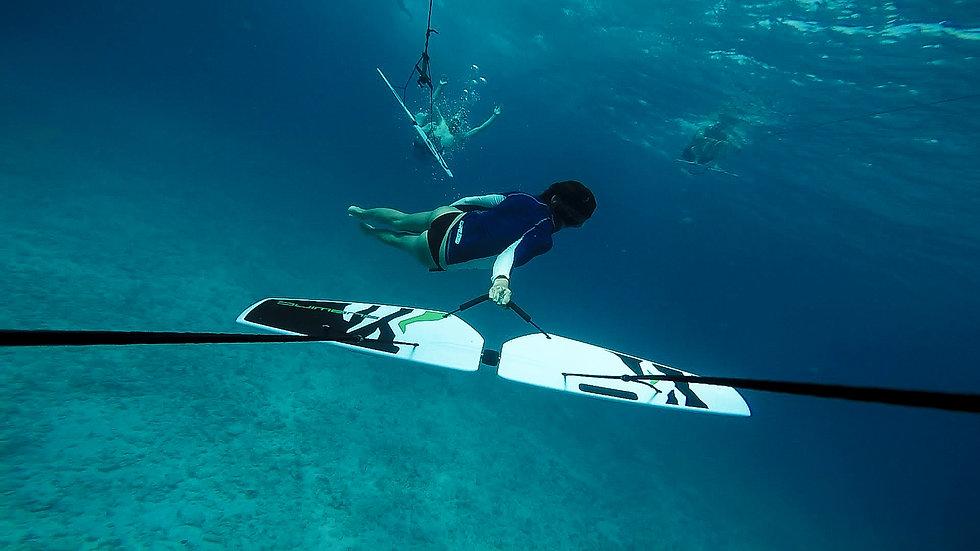 Wing-Diving-1.jpg