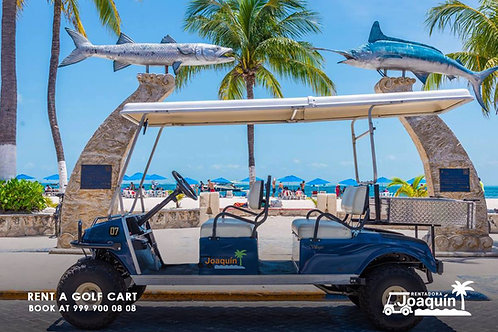 Large Size Golf Cart - 24 Hrs Rental