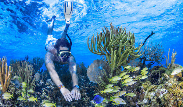 Mexico Divers | Snorkel | Isla Mujeres, Mexico