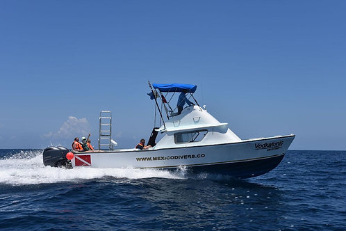 Private Tour Boat Bertram 31ft - Mexico Divers