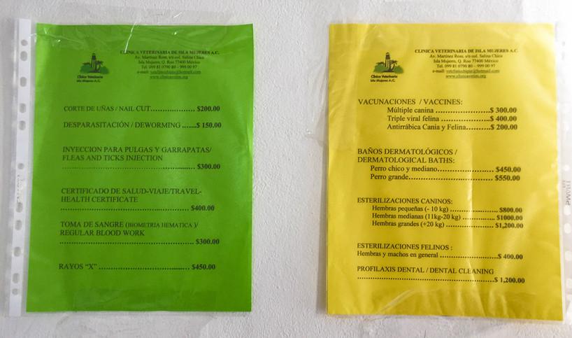 ClinicaVeterinariadeislaMujeres82-tasteo