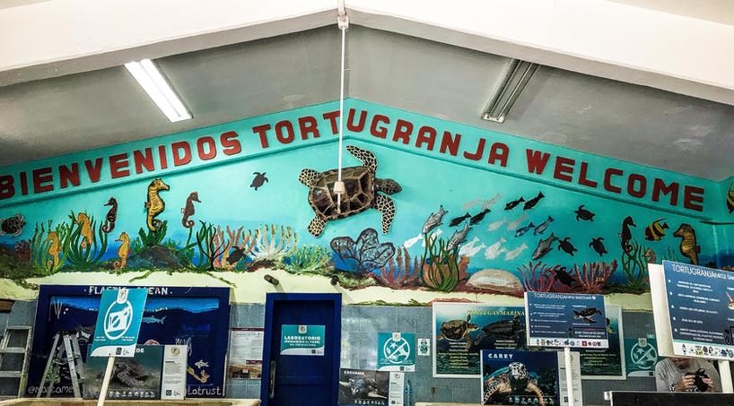 Tortugranja-Restaurantsandbars1-tasteofi