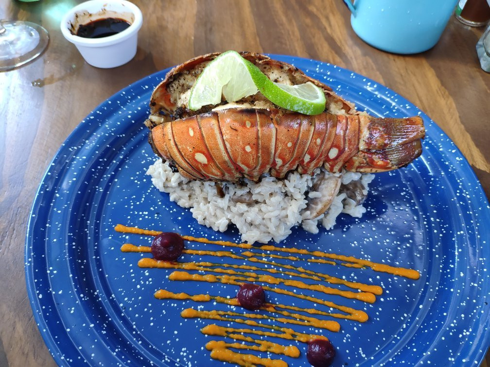 fishandgin4-tasteofisla-islamujeres-food