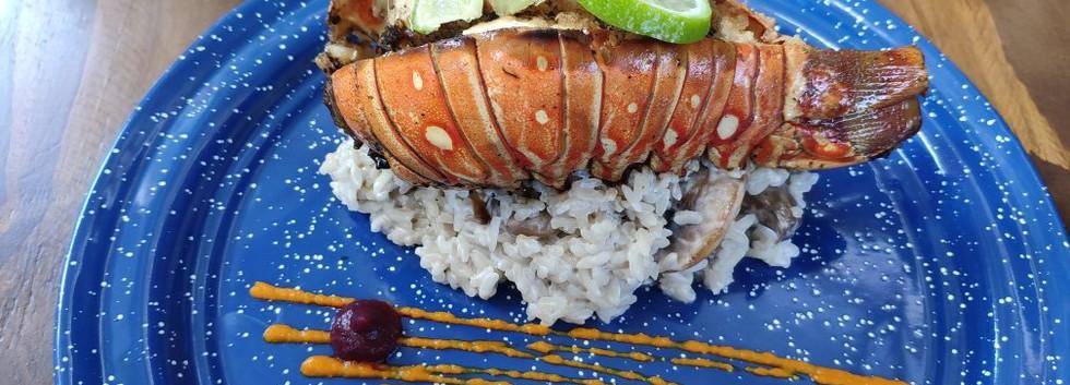 fishandgin4-tasteofisla-islamujeres-food