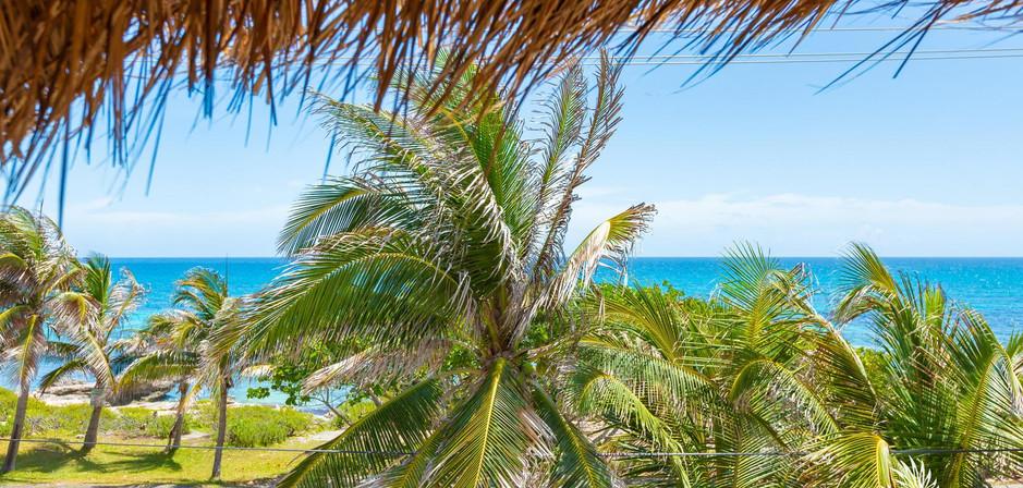Casa Bongo | Isla Mujeres, Mexico | Taste of Isla