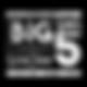 TheBigFive_ComedyShow_Logo GS_OPACITY.pn