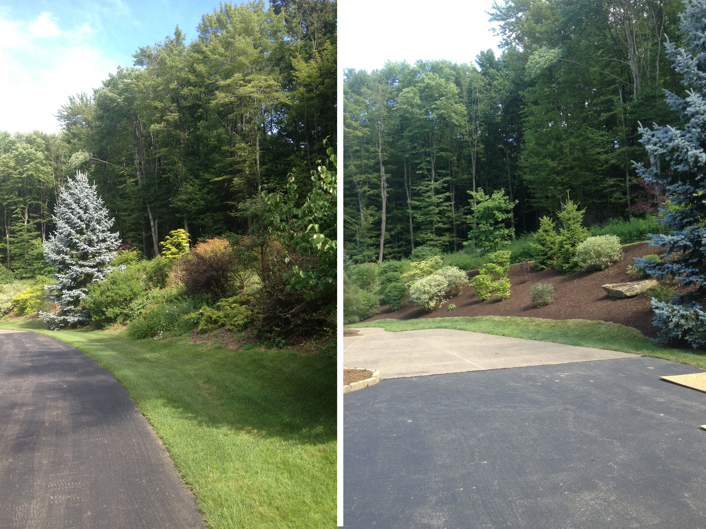 Landscaping - Before & After