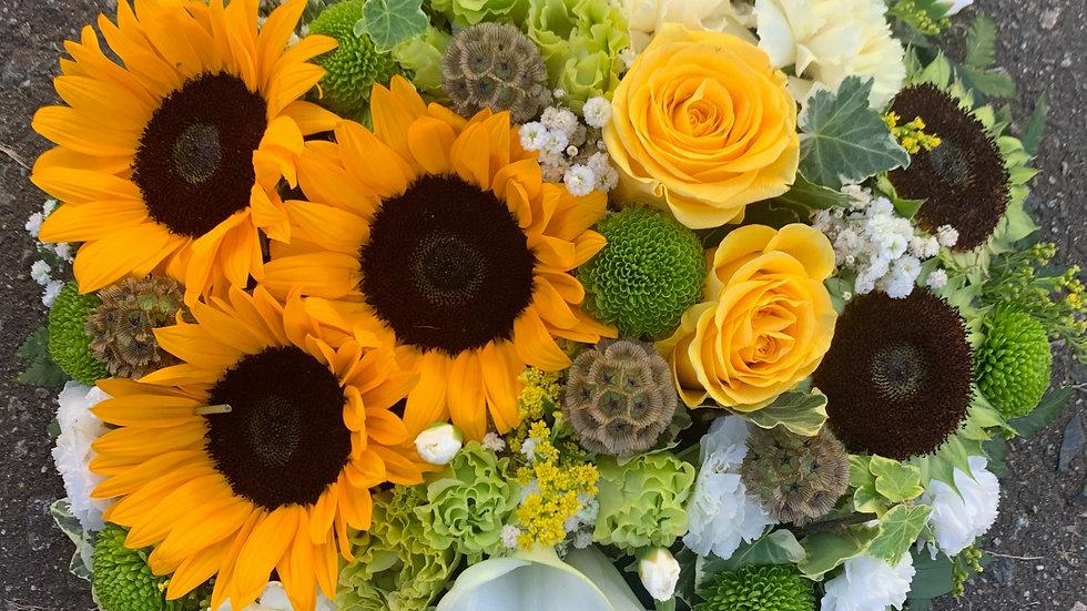 Sunflower - Posie
