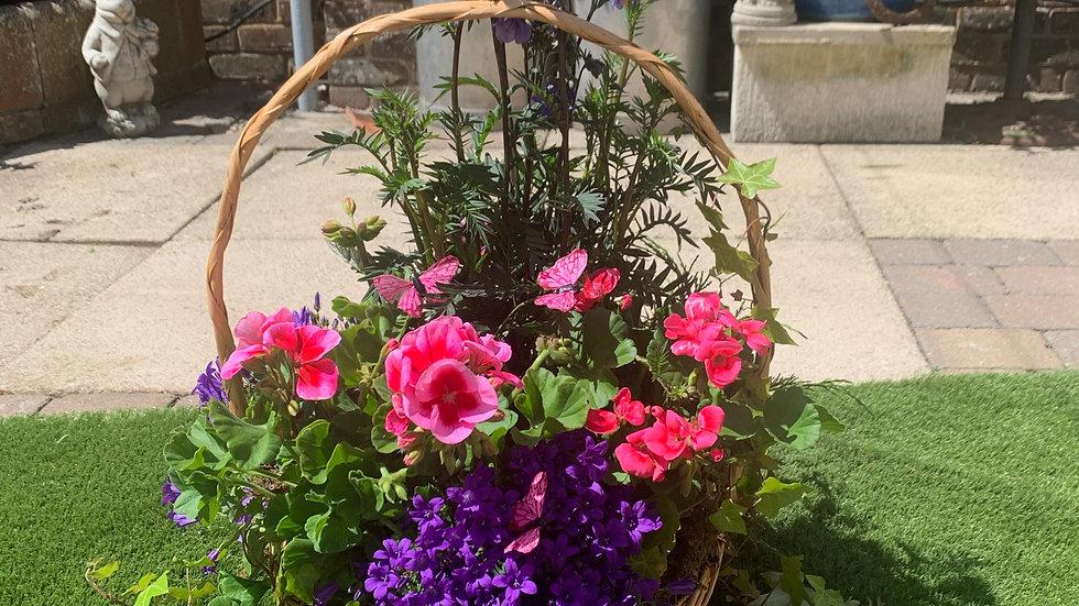 Pink & Purple- Planted Basket