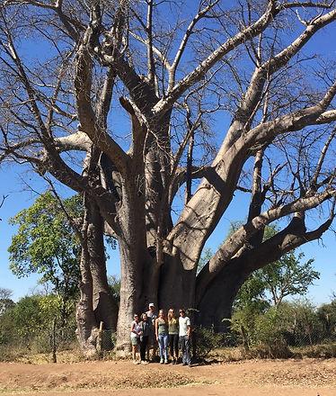 african family safari bryan gulley zimbabwe_edited.jpg