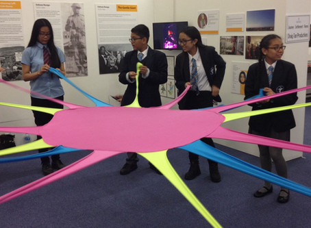 Year 8 Pupils Participate in Migration Project at Swansea Museum
