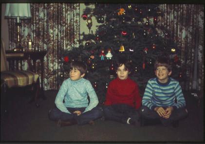 3 with tree.jpg